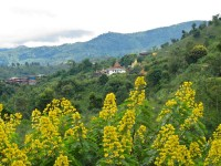 Burma / Myanmar  - Namhsan to Hsipaw Trek  -  IMG_2154