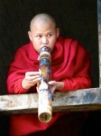 Burma / Myanmar  - Namhsan to Hsipaw Trek  -  IMG_2275
