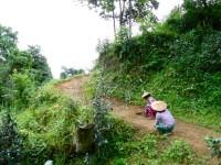 Burma / Myanmar  - Namhsan to Hsipaw Trek  -  IMG_2292