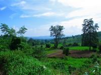 Burma / Myanmar  - Namhsan to Hsipaw Trek  -  IMG_2463
