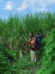 Burma / Myanmar  - Namhsan to Hsipaw Trek  -  IMG_2464