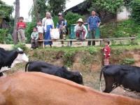 Burma / Myanmar  - Namhsan to Hsipaw Trek  -  IMG_2032