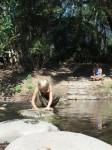 Australia - Carnarvon Gorge National park - IMG_6262