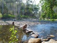 Australia - Carnarvon Gorge National park - IMG_6271