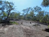 Australia - Carnarvon Gorge National park - IMG_6320