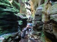 Australia - Carnarvon Gorge National park - IMG_6389