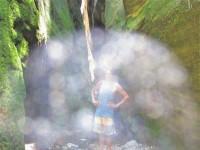 Australia - Carnarvon Gorge National park - IMG_6403