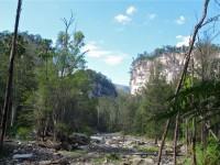 Australia - Carnarvon Gorge National park - IMG_6449