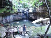 Australia - Carnarvon Gorge National park - IMG_6459