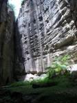 Australia - Carnarvon Gorge National park - IMG_6469