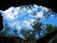 Australia - Carnarvon Gorge National park - IMG_6479