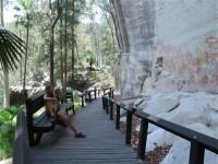 Australia - Carnarvon Gorge National park - IMG_6492