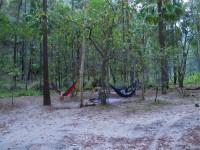 Australia - Carnarvon Gorge National park - IMG_6508