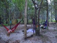 Australia - Carnarvon Gorge National park - IMG_6509