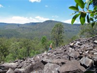 Australia - Carnarvon Gorge National park - IMG_6528