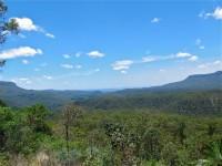 Australia - Carnarvon Gorge National park - IMG_6541