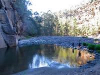 Australia - Carnarvon Gorge National park - IMG_6571