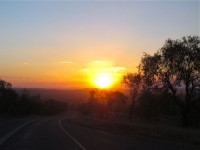 Australia - Carnarvon Gorge National park - IMG_6610