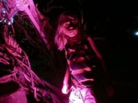 Australia, Daintree, Full  Eclipse Festival - IMG_4035