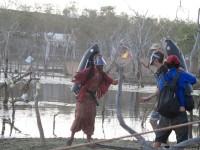 Australia, Daintree, Full  Eclipse Festival - IMG_4582