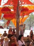 Australia, Daintree, Full  Eclipse Festival - IMG_4131