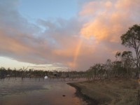 Australia, Daintree, Full  Eclipse Festival - IMG_4150