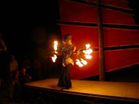 Australia, Daintree, Full  Eclipse Festival - IMG_4006