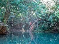 Australia - Daintree Rainforest, Blue Hole, Thronton Beach - IMG_5349
