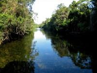 Australia - Daintree Rainforest, Blue Hole, Thronton Beach - IMG_5365
