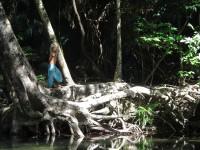 Australia - Daintree Rainforest, Blue Hole, Thronton Beach  - IMG_5373