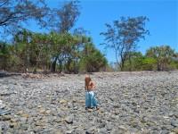Australia - Daintree Rainforest, Blue Hole, Thronton Beach  - IMG_5412