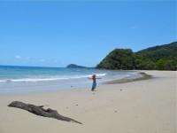 Australia - Daintree Rainforest, Blue Hole, Thronton Beach  - IMG_5421
