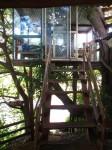 Australia -  Glass tree house farm - IMG_7529