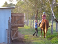 Australia -  Glass tree house farm - IMG_7571