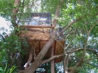 Australia -  Glass tree house farm - IMG_7536