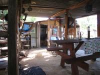 Australia -  Glass tree house farm - IMG_7537