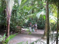 Australia - Joshepine falls, Paronela park - IMG_5768