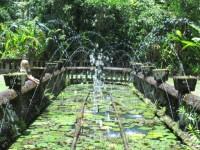 Australia - Joshepine falls, Paronela park - IMG_5795