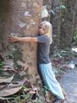 Australia - Joshepine falls, Paronela park - IMG_5810
