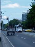 Australia -  Melbourne -IMG_8603