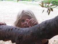alternativetraveling.com - Australia - Sydney, art, culture, nature  - IMG_9244