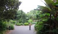 alternativetraveling.com - Australia - Sydney, art, culture, nature  - IMG_9277