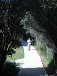 alternativetraveling.com - Australia - Sydney, art, culture, nature  - IMG_8215