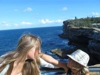 alternativetraveling.com - Australia - Sydney, art, culture, nature  - IMG_8257