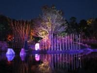 Australia - Woodford festival - IMG_7273