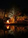 Australia - Woodford festival - IMG_7284