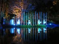 Australia - Woodford festival - IMG_7289