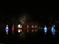 Australia - Woodford festival - IMG_7321