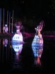 Australia - Woodford festival - IMG_7325
