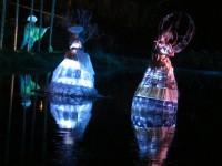 Australia - Woodford festival - IMG_7329